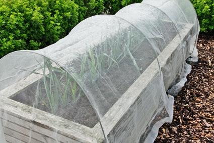 helfen pflanzen sch tzen folien vliese und netze. Black Bedroom Furniture Sets. Home Design Ideas