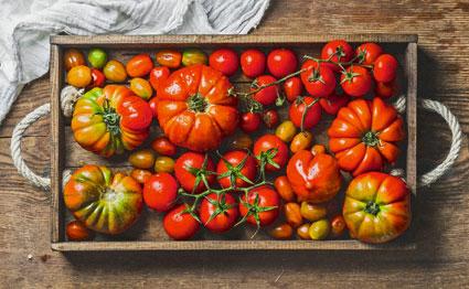eigenheimerverband tomaten ber tomaten. Black Bedroom Furniture Sets. Home Design Ideas